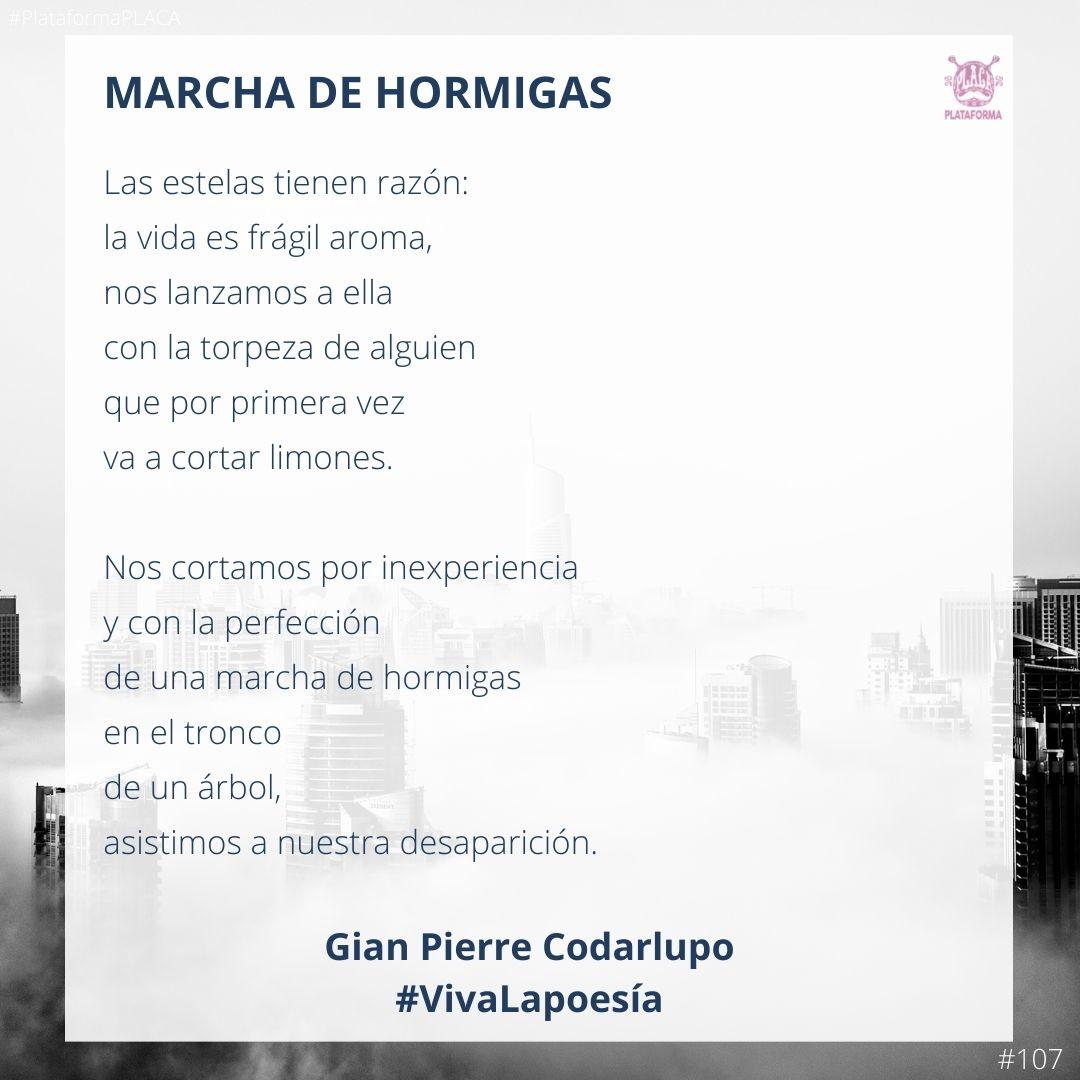 #VivaLaPoesía Gian Pierre Codarlupo #107